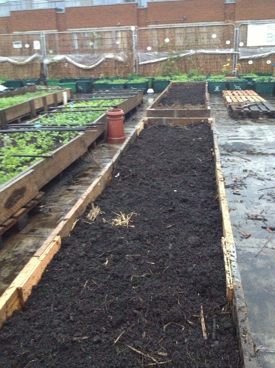 how to make a no dig garden bed